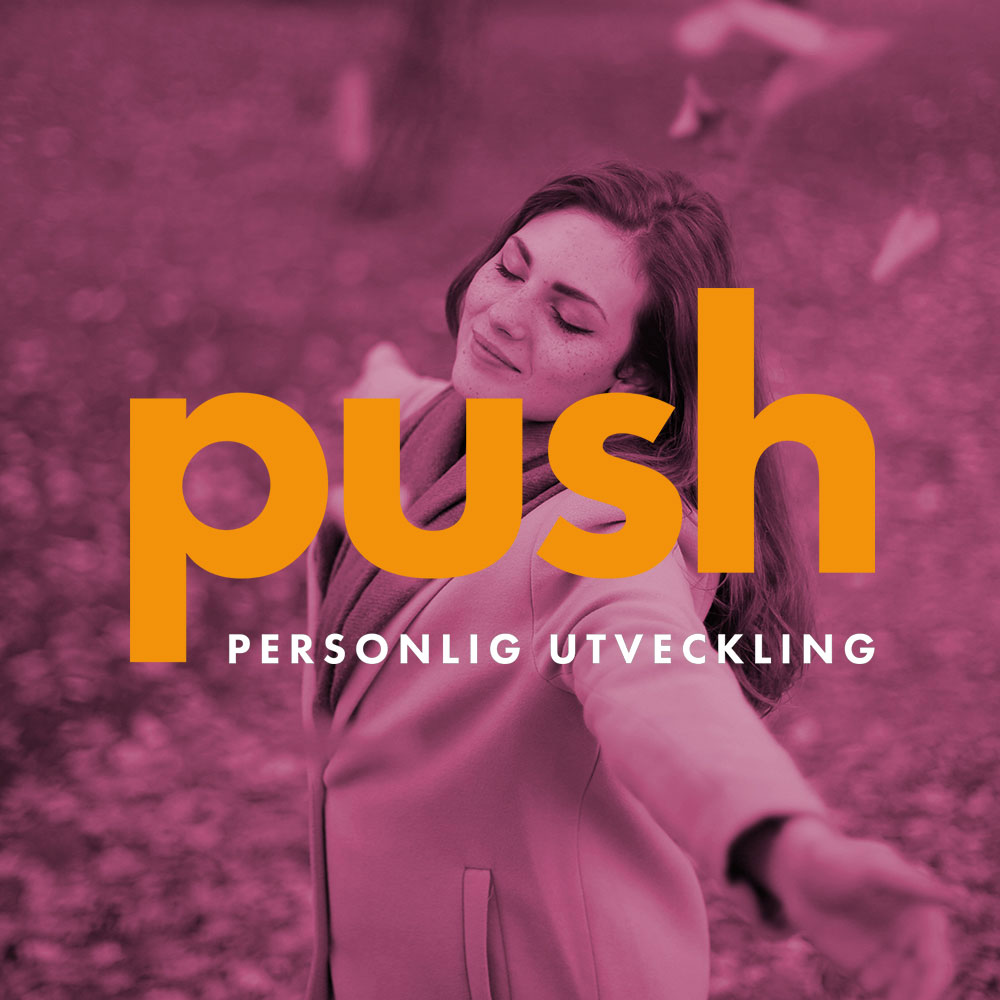 Logotyp Push Development